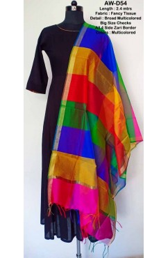 Multicolored Fancy Tissue Dupatta